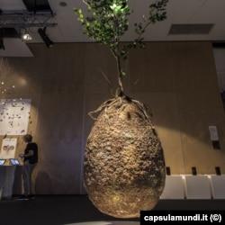Проект погребальной капсулы Capsula Mundi на дизайнерской выставке в Варшаве в 2016 году. Фото: capsulamundi.it