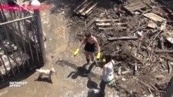 Ликвидация последствий наводнения в частном приюте для собак в Тбилиси