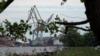 Народ против порта: как в Ленобласти защищают лес и свои дома. Премьера документального фильма