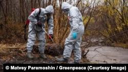Исследование и отбор проб на месте экологической катастрофы на Камчатке, 6 октября 2020 года