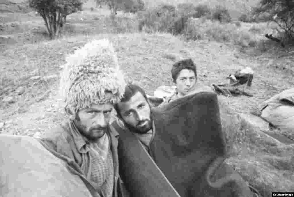 Сонные пастухи в Мелхистинском районе Чечни
