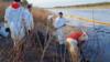 Russia - oil spill in Komi regon- Kolva River - screen grab from video by WWF Russia