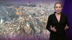 Мусорный полигон размером с Ватикан и тысячи уничтоженных деревьев – экоцид в Кыргызстане