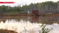 Жители Свердловской области заявили об экологической катастрофе