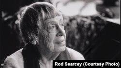 Rod Searcey, www.rodsearcey.com