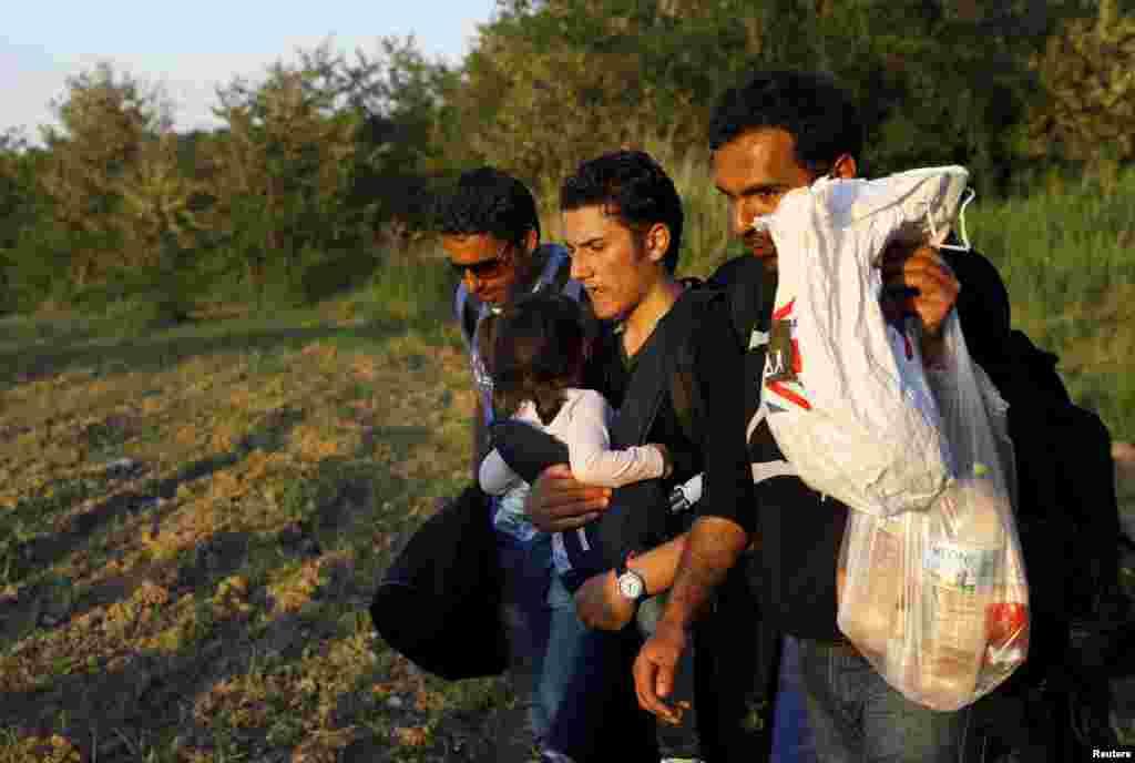 Сирийские иммигранты пересекают македонскую границу