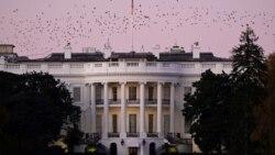 Америка: в Белом доме готовят новые санкции против России