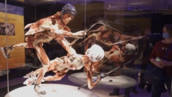 Do Ice-Skating Corpses Insult 'Religious Feelings'? Russia Investigates Body Worlds