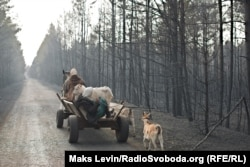 Жители села Магдин в Житомирской области Украины переезжают в соседнюю деревню со своими животными после того, как их дома сгорели во время пожаров, которые вышли за пределы зоны отчуждения в Чернобыле. 18 апреля (Макс Левин)