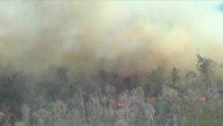 Медведев прилетел в Красноярск обсудить пожары