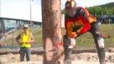 В Норвегии прошел чемпионат лесорубов