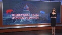 Итоги: промежуточные выборы и судьба российского расследования