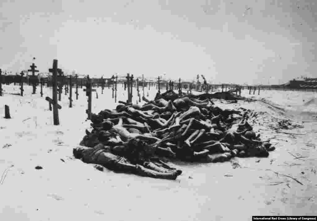 Тела жертв голода у кладбища в Самаре, 1921 год