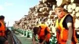 Человек на карте: как сплавляют лес по Северной Двине