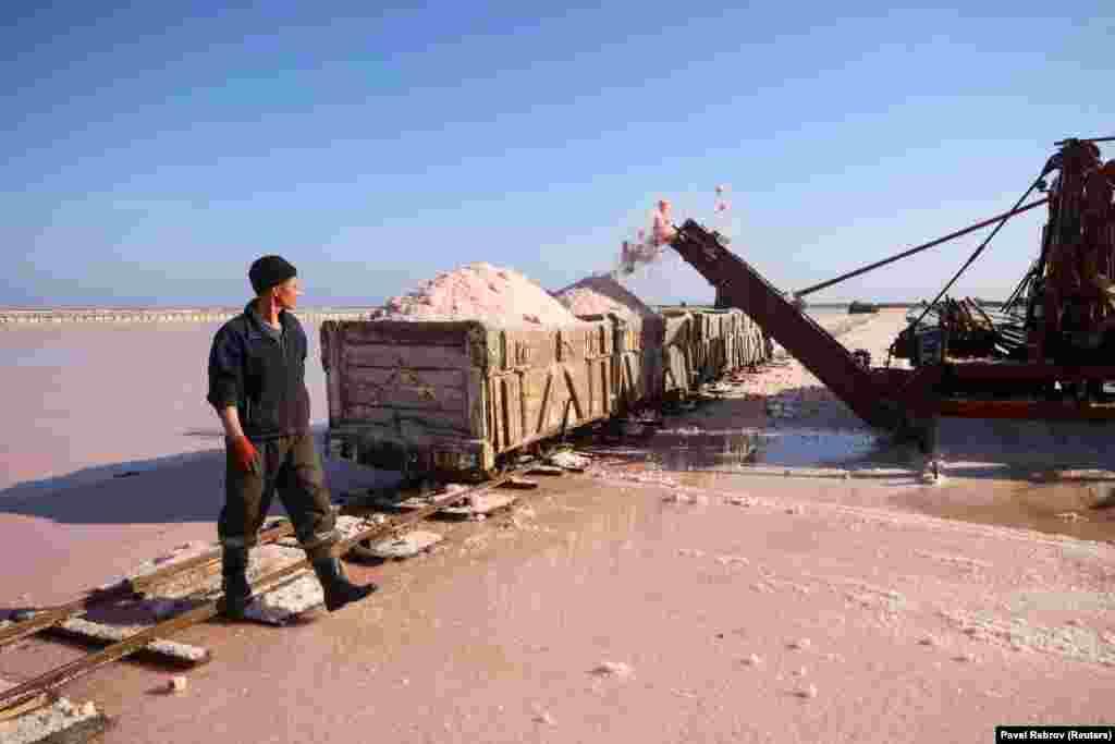 Работник идет мимо фургона, нагруженного розовой морской солью с озера Сасык-Сиваш, недалеко от Евпатории