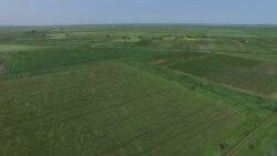 Через год в Украине заработает земельный рынок. Как это будет