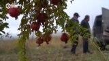 Армяне покидают территории Карабаха, переданные Азербайджану