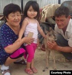 """""""Когда Арко был маленький, мы его пять раз в день кормили коровьим молоком"""", – говорит Ашимов"""