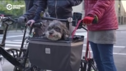 В Нью-Йорке каждую весну благословляют... велосипеды