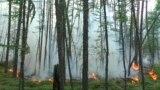 Главное: в Якутии горит лес, в Германии – наводнение