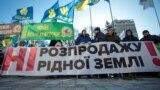 """Тимошенко против """"Слуги народа"""". Вечер с Тимуром Олевским"""