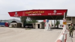 Киргизский тутовник против правил ЕАЭС