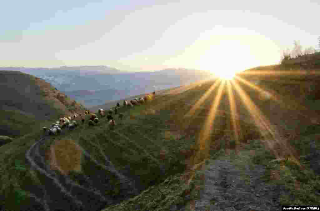Деревня Ардабиль расположена в горной местности, и добраться в нее даже на автомобиле – задача не из легких