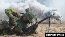 Военнослужающий армии Литвы