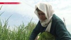 """$60 в месяц: чиновники в Таджикистане считают, что это – """"достаточная"""" зарплата"""