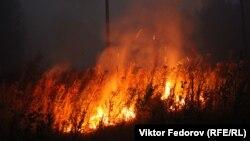 Лесной пожар в Карелии в 2021 году