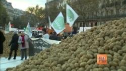 """В Париже фермеры, возмущенные политикой властей, устроили акцию """"в поддержку отечественного производителя"""""""