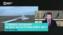 """Развенчание """"альтернативных"""" версий в суде по делу MH17"""