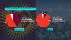 Кого из политиков и партий кыргызстанцы поддерживают накануне выборов в парламент?