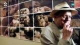 Британец Дэвид Хокни – самый дорогой художник современности