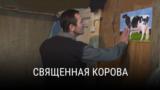 """""""Священная корова"""". Режиссер: Имам Гасанов. Азербайджан-Германия-Румыния-Катар, 2015"""