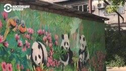 Художник в Казахстане расписывает стены и гаражи, чтобы людям жилось радостнее