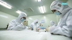 Детали: гонка за лекарством от коронавируса