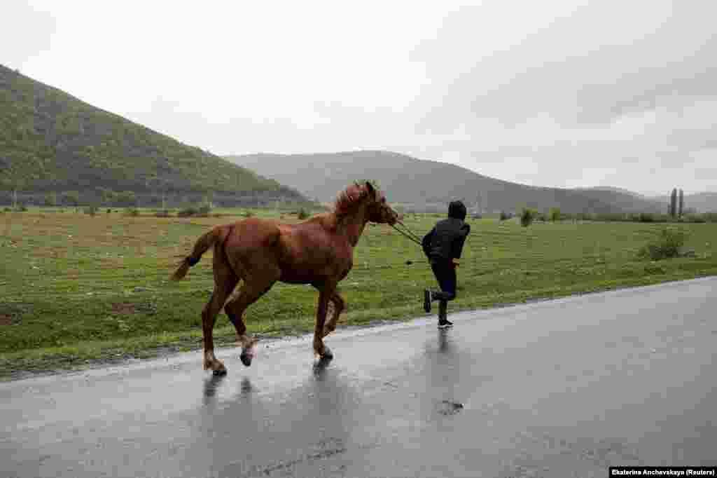 Мальчик с лошадью в Дуиси