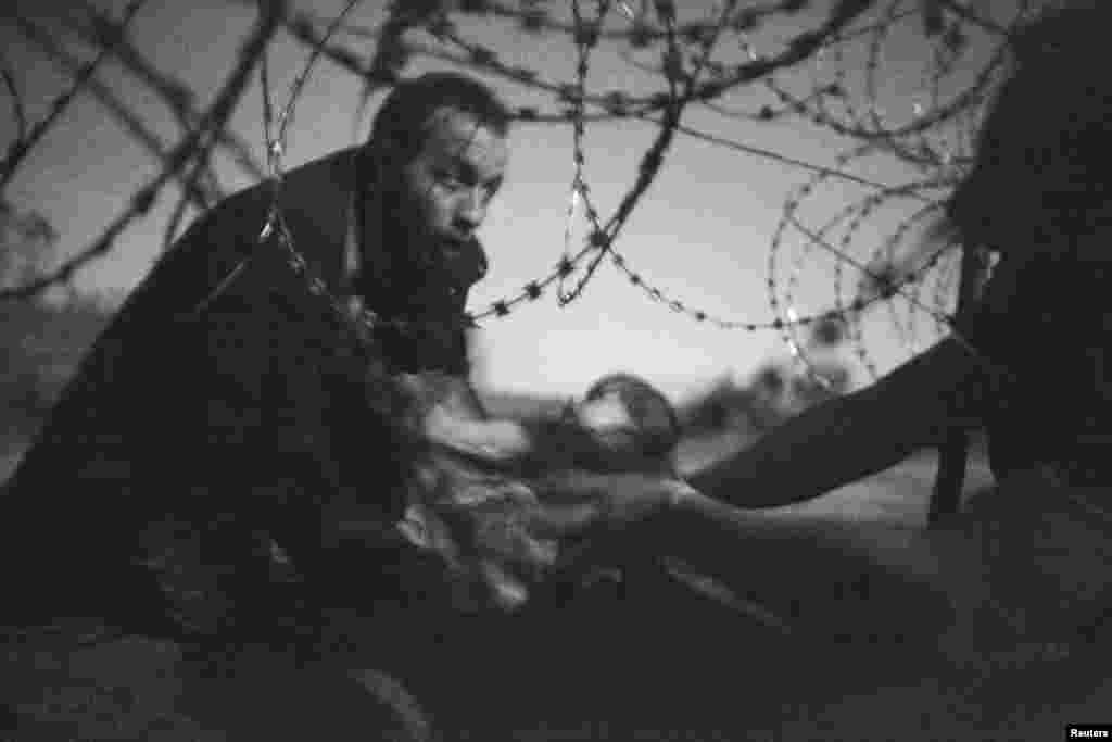 """Обладателем премии World Press Photo вноминации """"Фотография года"""" стал австралиец Уоррен Ричардсон (Warren Richardson). Его наградили зафотографию """"Надежда нановую жизнь"""", накоторой изображены беженец, передающий ребенка через забор сколючей проволокой. Снимок был сделан 28августа 2015 года навенгерско-сербской границе"""