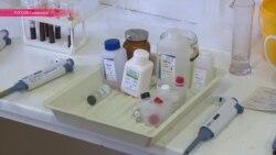 Минздрав РФ не рекомендует пациентам умирать чаще, чем раз в неделю на одном участке