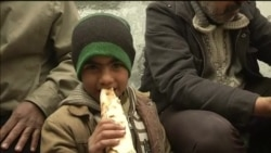 Около 35 тысяч сирийцев бежали к турецкой границе за последние два дня