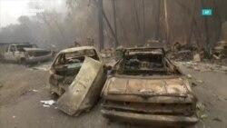 Почему горит Калифорния?