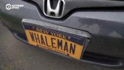 Нью-Йорк, New York: зачем в Нью-Йорк вернулись киты