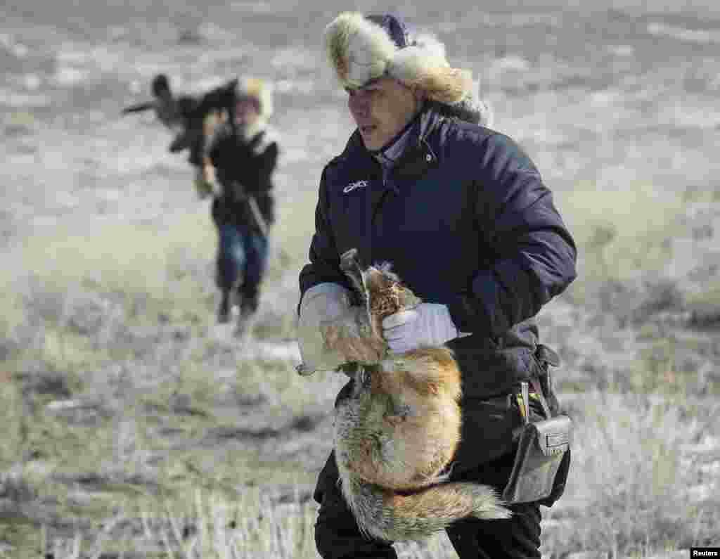 Еще один этап – охота на лисицу