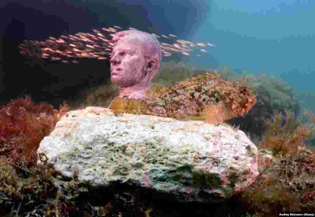 Стая рыб проплывает мимо Юрия Гагарина