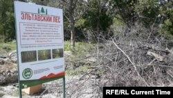 Стройка в Эльтавском лесу