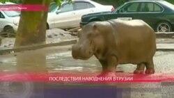 Наводнение в Грузии 14 июня