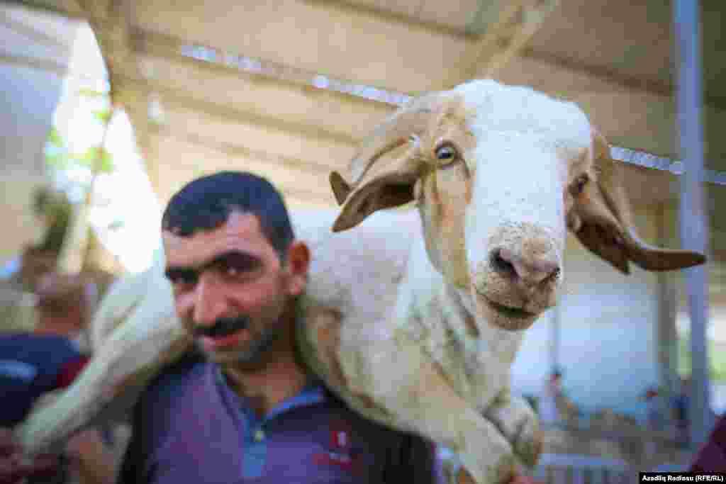 Мусульмане Азербайджана празднуют Курбан-байрам в Баку