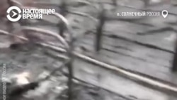 Пожар в детском лагере под Хабаровском – рассказ очевидца