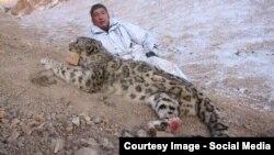 Павел Тё с убитым снежным барсом